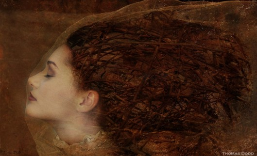"""Behind the Veil"" by Thomas Dodd"